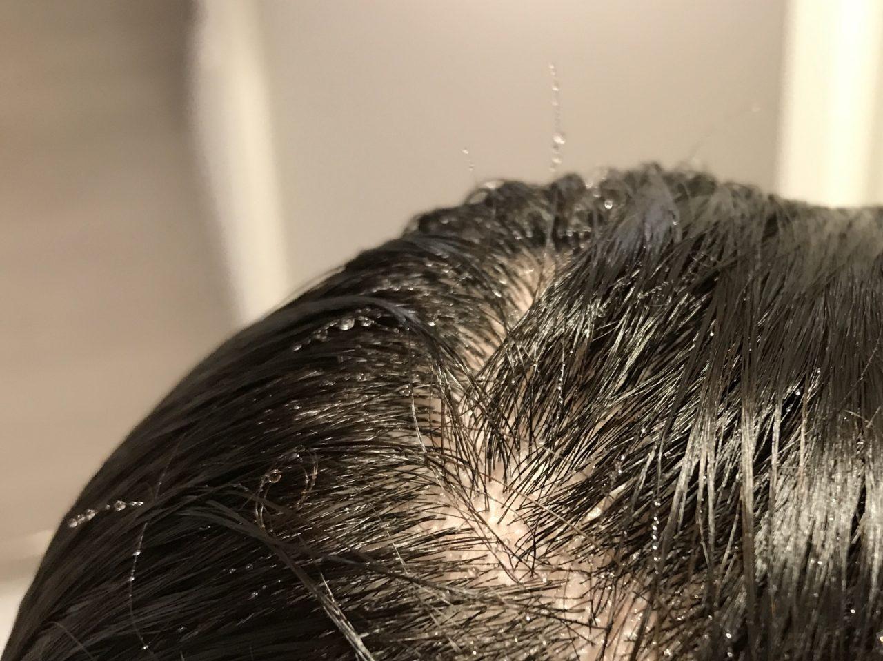 洗った後の髪